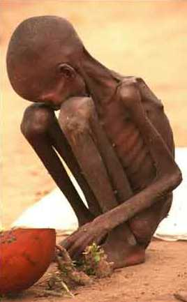 starving_child-sudan2.jpg